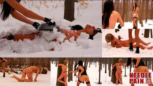 0074 QS Short Snow Stories m - Short Snow Stories - Queensnake, Tanita, Misty, snow, snowball