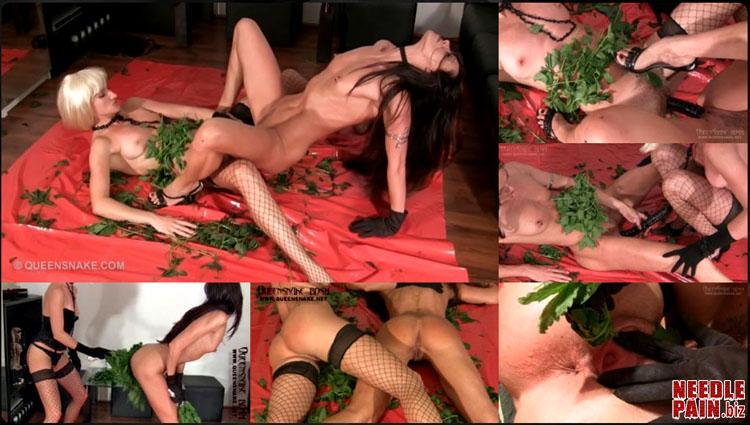 5d124fda3bec3 0010 QS Nettle Lesbians - Nettle Lesbians - Queensnake, Nazryana, stuffing, speculum