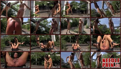0336 QS Whipping Holly.t m - Whipping Holly - Queensnake, Holly, pussy whipping, dirty