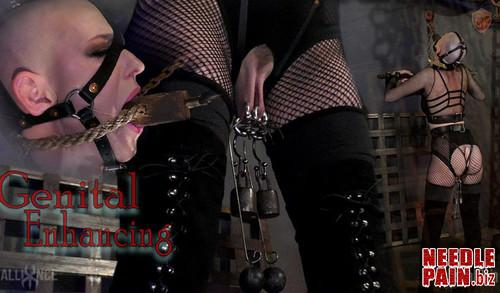 Genital Enhancing   Abigail Dupree   SensualPain 2018 12 26 m - Genital Enhancing - Abigail Dupree - SensualPain 2018-12-26