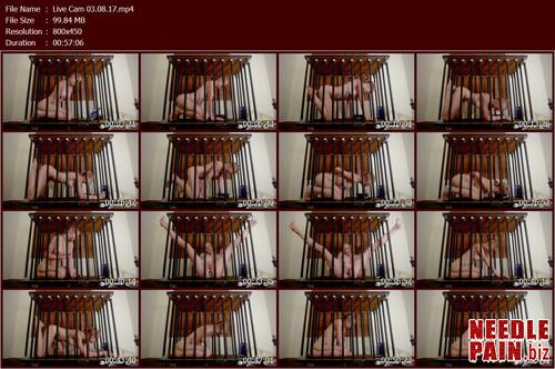 Live Cam 03.08.17.t m - Live Cam 03.08.17 - Rachel Greyhound - Bondagelife