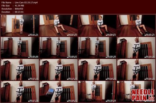 Live Cam 03.19.17.t m - Live Cam 03.19.17 - Rachel Greyhound - Bondagelife