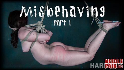 Misbehaving Part 1   Brie Haven   HardTied 2019 03 06 m - Misbehaving Part 1 - Brie Haven - HardTied 2019-03-06, bound spread