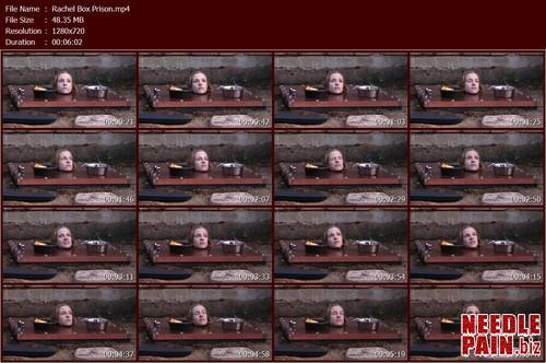 Rachel Box Prison.t m - Rachel Box Prison - Rachel Greyhound - Bondagelife