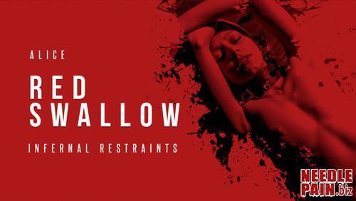 Red Swallow Part 1   Alice   Feb 1  2019 Infernalrestraints m - Red Swallow Part 1 - Alice - Feb 1, 2019 Infernalrestraints