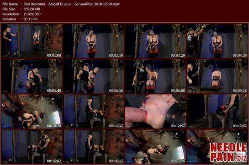 Rod Restraint   Abigail Dupree   SensualPain 2018 12 19.t m - Rod Restraint - Abigail Dupree - SensualPain 2018-12-19