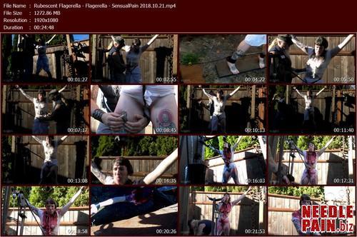 Rubescent Flagerella   Flagerella   SensualPain 2018.10.21.t m - Rubescent Flagerella - Flagerella - SensualPain 2018.10.21