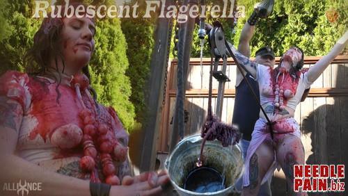 Rubescent Flagerella   Flagerella   SensualPain 2018.10.21 m - Rubescent Flagerella - Flagerella - SensualPain 2018.10.21