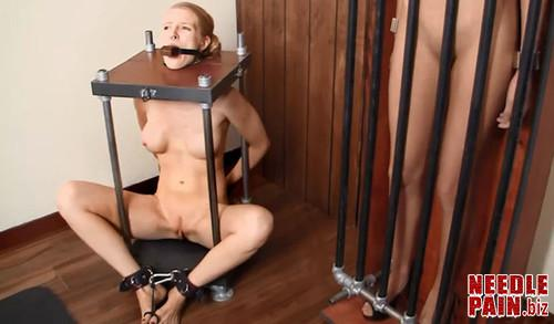 Stuffed Caged and Vibed m - Stuffed, Caged & Vibed - Rachel Greyhound, Rosie Dillion