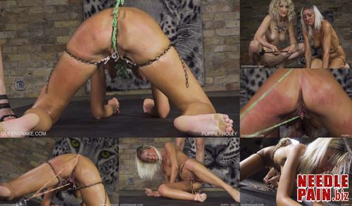 0463 QS Puppy   Holly m - Puppy - Holly - Nazryana, rubber bands, pussy torment, flogging