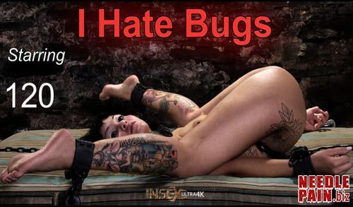 I Hate Bugs   120   Rain DeGrey Renderfiend 2019 02 28 m - I Hate Bugs - 120 - Renderfiend 2019-02-28, insex, bdsm, torture