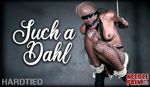 Such a Dahl   Bellah Dahl   HardTied 2019 05 01 m - Such a Dahl - Bellah Dahl - HardTied 2019-05-01, BDSM