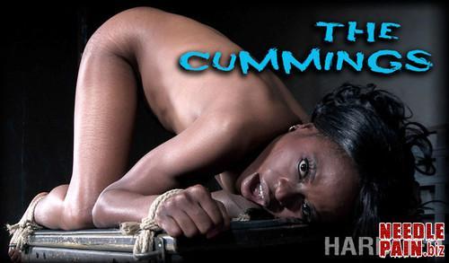 The Cummings   Melody Cummings   HardTied 2019 06 26 m - The Cummings - Melody Cummings - HardTied 2019-06-26